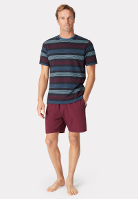 Guisley Short Sleeve Navy Wine and Denim Blue Stripe T-Shirt